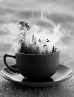 Experience the Art of Tea Leaf Reading