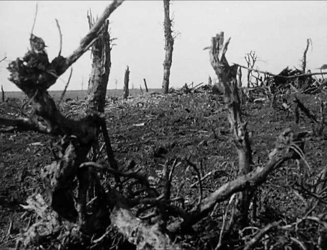 First World War Open Day