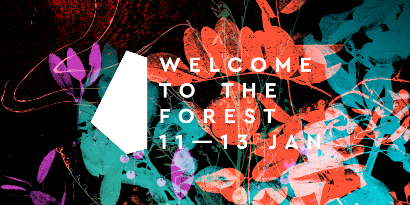Welcome to the forest